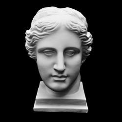 Голова Венеры Милосской, гипс