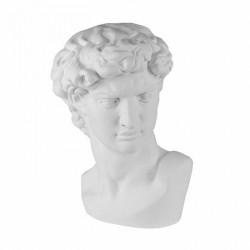Гипсовая голова Давида. Микеланджело.