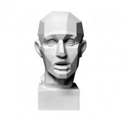 Обрубовка головы по Гудону
