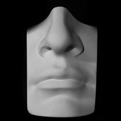 Нос с губами Давида. Микеланджело