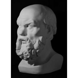 Голова Сократа, гипс