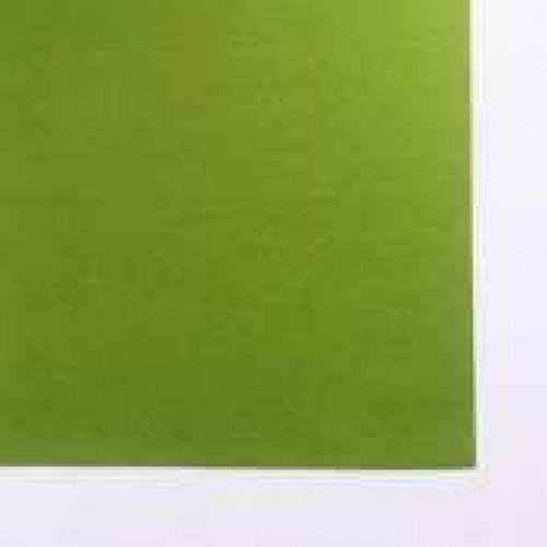 Бумага для пастели Tiziano 160г/м.кв 50х65см фисташковый