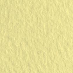 Бумага для пастели Tiziano 160г/м2 А4 № 02 Кремовый (Crema)