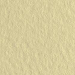 Бумага для пастели Tiziano 160г/м.кв 50х65см сахара