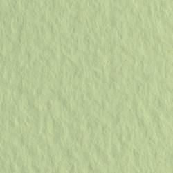 Бумага для пастели Tiziano 160г/м.кв 50х65см салатовый теплый