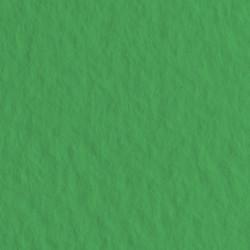 Бумага для пастели Tiziano 160г/м.кв 50х65см зелёный