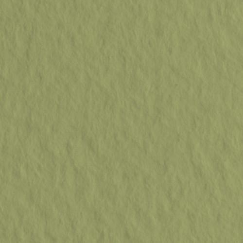 Бумага для пастели Tiziano 160г/м.кв 50х65см оливковый