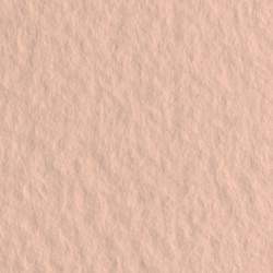 Бумага для пастели Tiziano 160г/м.кв 50х65см розовый