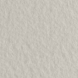 Бумага для пастели Tiziano 160г/м.кв 50х65см серый светлый