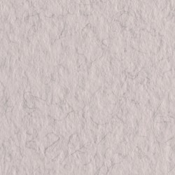 Бумага для пастели Tiziano 160г/м.кв 50х65см лама