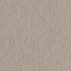 Бумага для пастели Tiziano 160г/м.кв 50х65см серый теплый