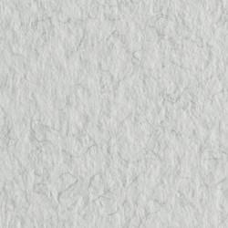 Бумага для пастели Tiziano 160г/м.кв 50х65см белый с ворсом