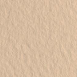 Бумага для пастели Tiziano 160г/м2 70х100 см, № 40 бледно-кремовый