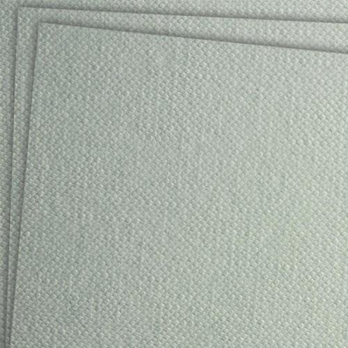 Бумага для масла Tela 300г/м2 50*65см Canvas Grain