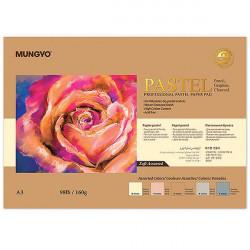 Склейка для пастели (5 светлых цветов) 160г/м2 25%хлопок А3, Mungyo, 20л.