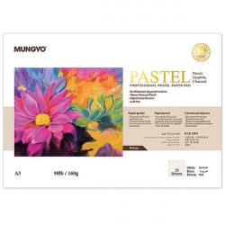 Склейка (блокнот) профессиональная бумага для пастели, 160 гр, А3, белая, 20 листов