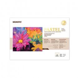 Склейка (блокнот) профессиональная бумага для пастели, 160 гр, А4, белая,  30 листов
