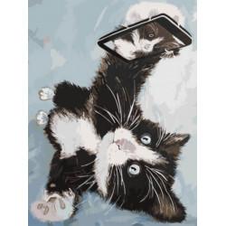 Картина по номерам «Котенок делает селфи», 30x40 см