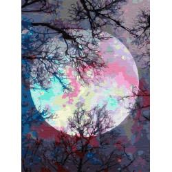 Картина по номерам «Неоновая луна», 30x40 см
