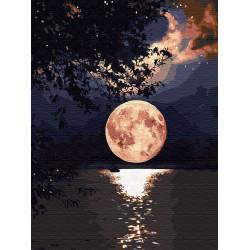 Картина по номерам «Загадочное полнолуние», 30x40 см