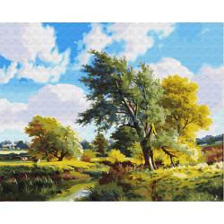 Картина по номерам «Солнечный пейзаж», 40*50 см.