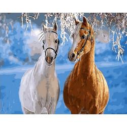 Картина по номерам «Парочка лошадей», 40x50 см