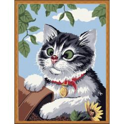 Картина по номерам «Любопытный котенок», 30x40 см Premium