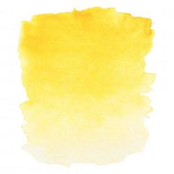 Индийская желтая, акварель «Белые ночи», кювет 2,5 мл