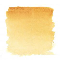 Неаполитанская желтая, №209, акварель «Белые ночи», кювет 2,5 мл