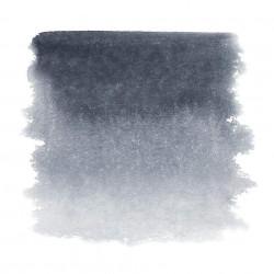 Серая Пейна, акварель «Белые ночи», кювет 2,5 мл