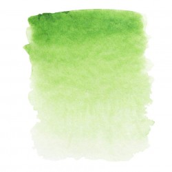 Травяная зеленая, акварель «Белые ночи», кювет 2,5 мл