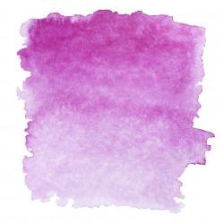 Фиолетовый хинакридон, №621, акварель «Белые ночи», кювет 2,5 мл