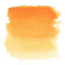 Золотистая темная, акварель «Белые ночи», кювет 2,5 мл