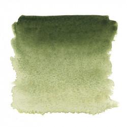 Земля зеленая, №730, акварель «Белые ночи», кювет 2,5 мл