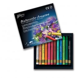 Акварельные профессиональные Mungyo мелки, 12 цветов в картонной коробке