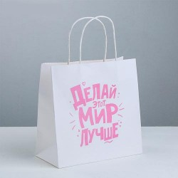 Пакет подарочный «Делай этот мир лучше», 22 × 22 × 11 см